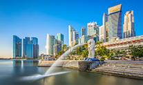 新加坡公司服务